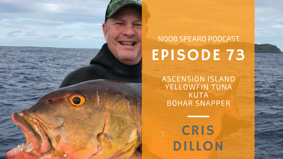 Chris Dillon spearfishing hunting techniques chat on Noob Spearo Podcast