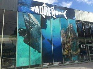 Adreno Alexandria Store Sydney