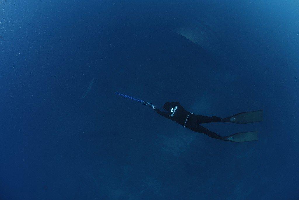 Spearfishing Spanish Mackerel, Month of Mackerel Summary