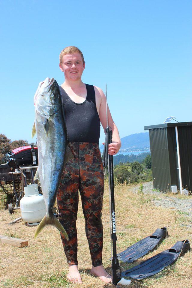 Yellowtail Kingfish Armed Snorkeler. Shore Diving ninja Ryan