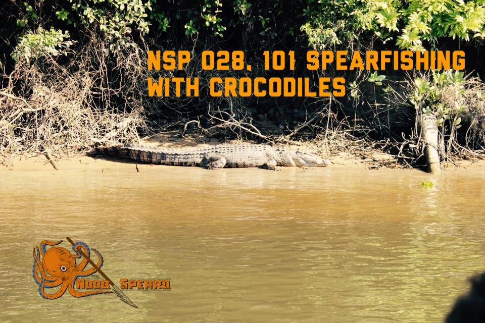 Spearfishing With Crocodiles