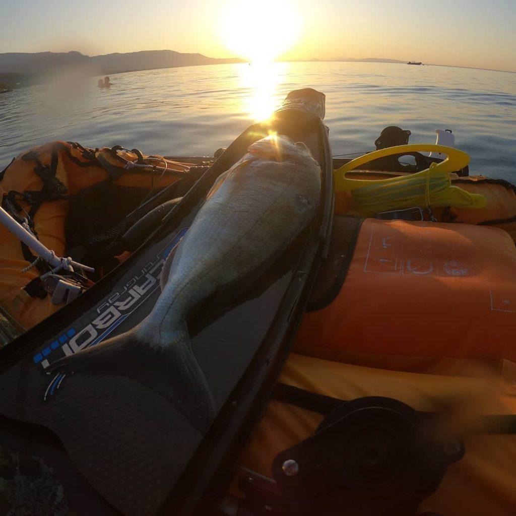 NSP:040 Vasilis Koroneos Greek Deepex Finalist. Greece Spearfishing Catch