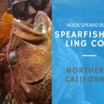 Spearfishing California - Ling Cod