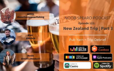 NSP:122 NZ Trip Part 3 | Pub Yarn + Debrief