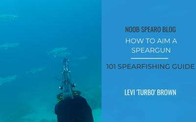 101 – How to Aim a Speargun
