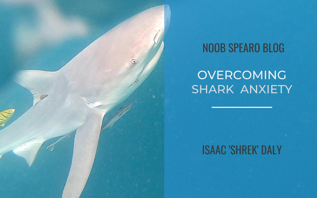 How Do I Overcome My Fear of Sharks?