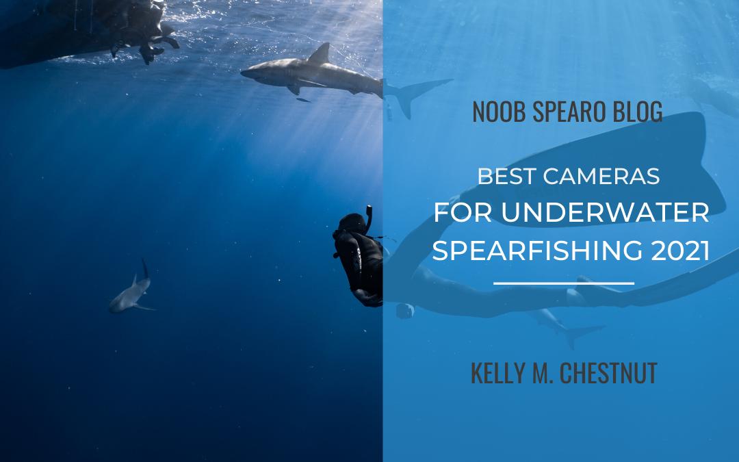 Best Cameras for Underwater Spearfishing 2021
